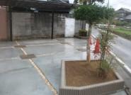 土間と植栽